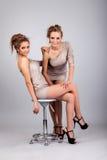 2 близнеца девушек, изолированного на серой предпосылке Стоковая Фотография RF