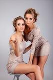 2 близнеца девушек, изолированного на серой предпосылке Стоковые Изображения RF