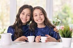 2 близнеца сестер выпивая чай Стоковое фото RF
