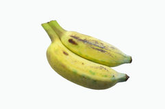 2, близнецы культивировали банан на белой предпосылке Стоковая Фотография RF