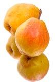 близнец груш здоровья плодоовощ Стоковые Фото
