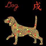 Бдительная собака бигля с цветом цветет над чернотой Стоковые Изображения RF