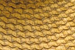Блокировать зигзага листьев кокоса Стоковая Фотография RF