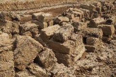 Блоки на поле дерновины Стоковое Изображение