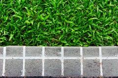 Блоки сада Стоковые Фото