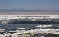 Блоки льда к морю Стоковая Фотография RF