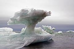 Блоки льда к морю Стоковые Фотографии RF