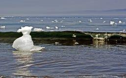 Блоки льда к морю Стоковые Изображения RF