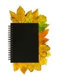 Блокнот с много листьев осени Стоковое Изображение