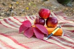 Блокнот, яблоки и ручка на шотландке с листьями осени Стоковые Изображения