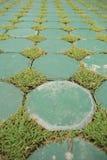 Блок цемента настила Eco и зеленая трава Стоковое Фото