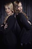 Блондинка и брюнет Стоковое Изображение