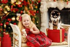 Блондинка младенца девушки в красном платье около осиплого щенка на рождестве Стоковое Изображение RF