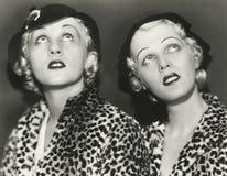 2 блондинкы в печати леопарда Стоковое Фото