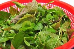 Блюдо въетнамских трав Стоковые Изображения