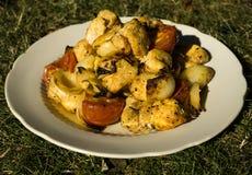 Блюдо изолированных мяса, овощей, специй, базилика, трав и сыра - carbonara alla макаронных изделий Стоковое Изображение RF