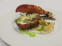 Блюдо омара Стоковое Изображение RF