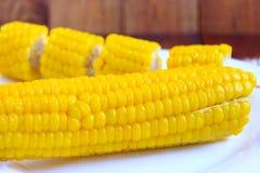 Блюдо с кипеть corns Стоковые Изображения