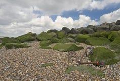 Вагонетка выведенная на пляж Стоковые Фото