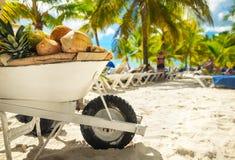 Вагонетка плодоовощ на пляже Стоковая Фотография