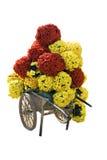 вагонетка цветка Стоковое Изображение