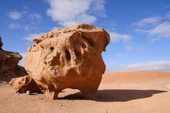 вади камня рома Иордана пустыни коровы Стоковые Изображения RF