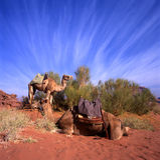 вади рома 2 верблюдов Стоковые Фотографии RF