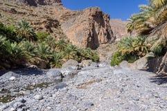 Вади Nakhr - Оман стоковые фотографии rf