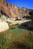 вади tiwi уговаривать бассеина Омана стоковое изображение rf