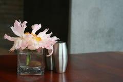 ваза бутона Стоковые Изображения RF