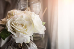ваза весны красивейших цветков стеклянная Стоковая Фотография