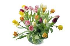 ваза весны цветков Стоковая Фотография