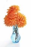ваза георгинов 3 стоковое изображение rf