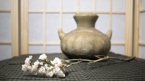 Ваза гончарни с цветком Стоковые Фотографии RF