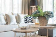 Ваза завода на круглом столе в классической живущей комнате Стоковое Фото