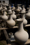 ваза зародышей Стоковое Изображение