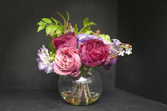 Ваза красивых цветков и snowdrops тюльпанов изолированных на черноте Стоковое Фото