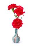 ваза красного цвета гвоздики стоковое изображение rf