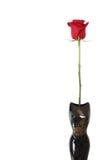 ваза красного цвета розовая стоковые фото
