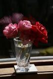 ваза роз Стоковые Фото