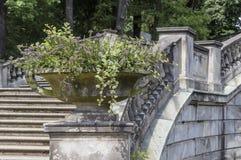 Ваза сада каменная Стоковое фото RF