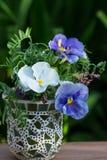 ваза сделанная из стекла Стоковые Изображения
