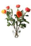 Ваза с розами Стоковые Фотографии RF