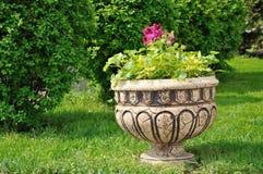 Ваза с цветками Стоковое Изображение RF