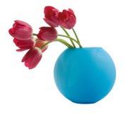 ваза тюльпана голубого красного цвета Стоковое Фото