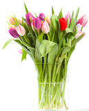 Ваза тюльпана Стоковые Фото
