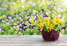 Ваза цветка на деревянной предпосылке сада таблицы и космоса Стоковое Изображение RF