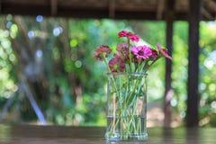 ваза цветков Стоковая Фотография