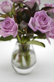 ваза 2 унылая розовая роз Стоковые Изображения