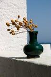 ваза Стоковое фото RF